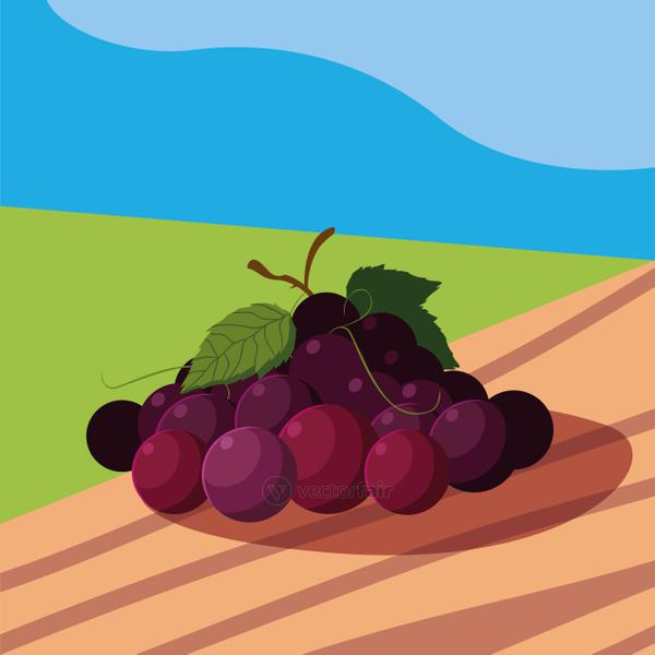 fresh grapes fruits in wooden table and landscape