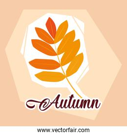 hello autumn poster with branch and leafs