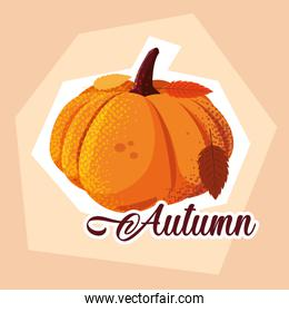 hello autumn poster with pumpkin and leafs