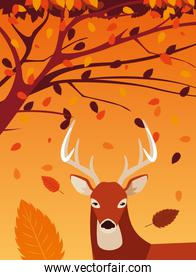 hello autumn poster with deer animal and tree