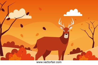 hello autumn poster with deer animal in landscape