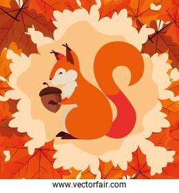 hello autumn poster with chipmunk and nut
