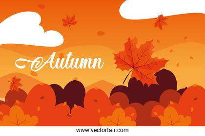 hello autumn poster with landscape and leafs