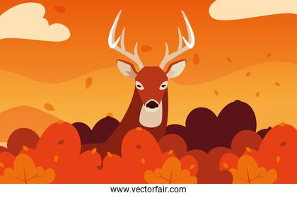 hello autumn poster with deer animal