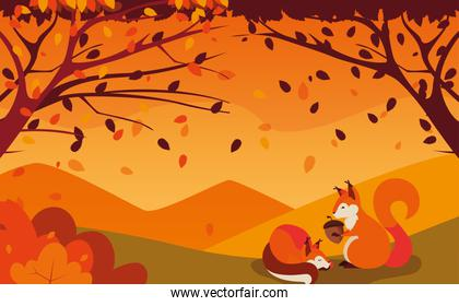 hello autumn poster with chipmunks and nut