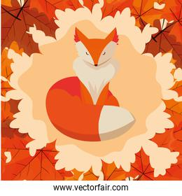 hello autumn poster with fox animal in frame of dry  leafs
