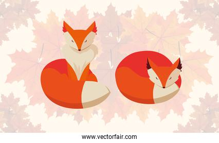 hello autumn poster with foxes animals