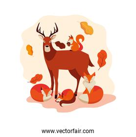 hello autumn banner with deer animal and leafs