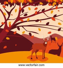 hello autumn cartel with group deer in landscape