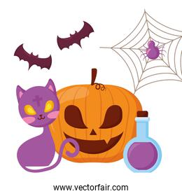 happy halloween pumpkin with cat and potion
