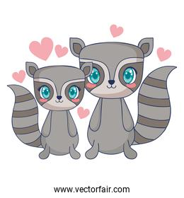 cute raccoons couple characters vector illustration