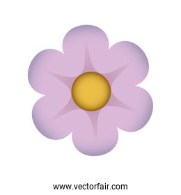 cute flower drawing icon