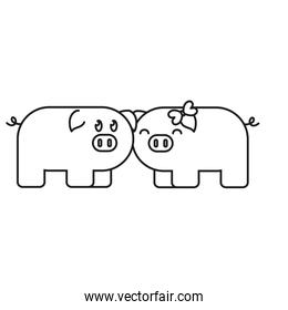 couple of cute pigs icon over white