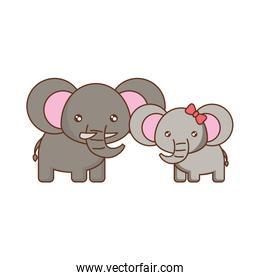 cute animals design