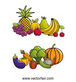 biological food icon stock