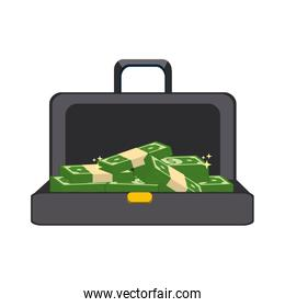 suitcase with green bill money inside