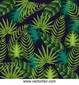 nice and exotic leaves of plants background