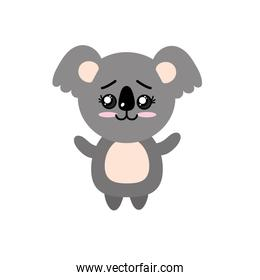 cute koala wild animal with face expression