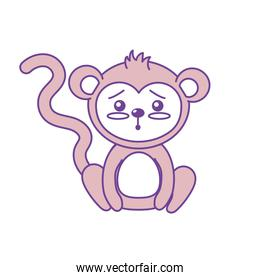 cute monkey wild animal with face expression