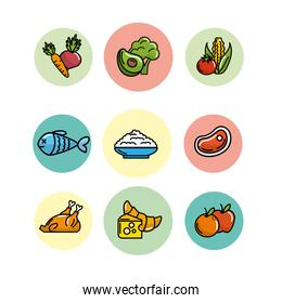 set nutrition vegetables and fruits with protein and flours