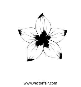 line rustic flower with natural petals