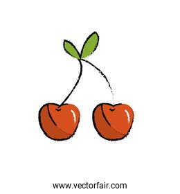 delicious and healthy cherry fruit