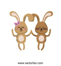 cute animal couple rabbit together