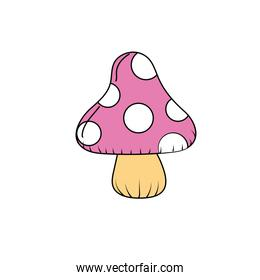 beauty natural fungus plant icon