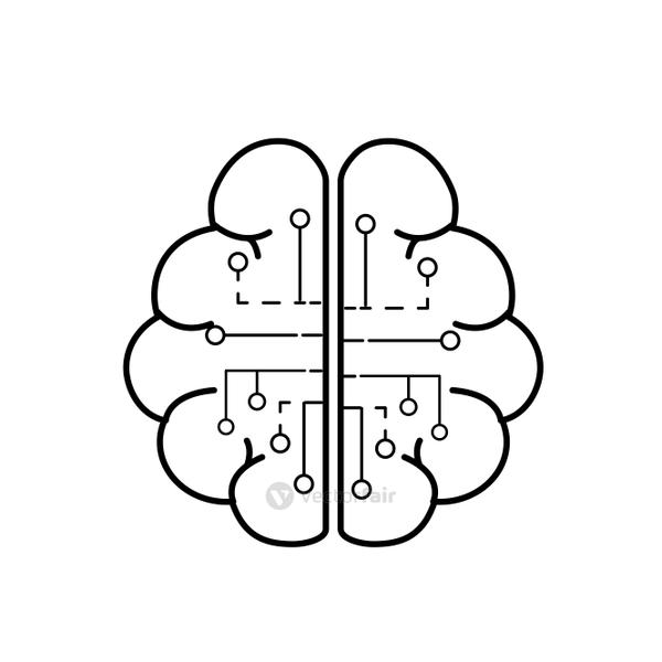 line anatomy brain with circuits digital connection