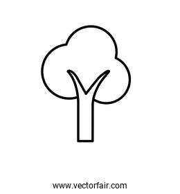line beauty ecological and natural tree icon