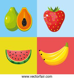 set delicious tropical and exotic fruit