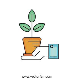 ecology plant with flowerpot and leaves in the hand