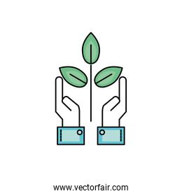 ecology plant with leaves and hands up