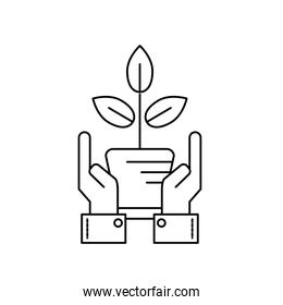 line ecology plant with flowerpot and leaves with hands over white