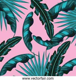tropical leaves natural plants background