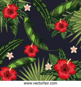 flowers with tropical leaves plants background