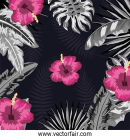 tropical flowers with natural plants background