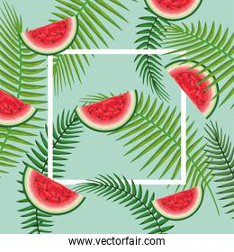 square frame with watermelon and branches leaves
