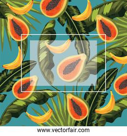 square frame with papayas and bananas fruits and leaves