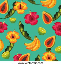 tropical fruits and flowers with leaves background
