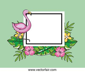 square emblem with flamish and tropical flowers