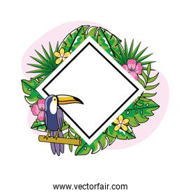 diamond emblem with toucan and tropical flowers