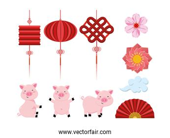set chinese lamps with flowers and fan with pigs