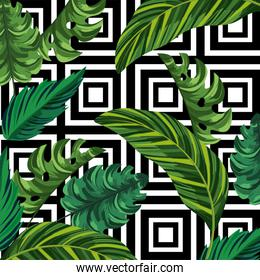 leaves plants and geometric figures background