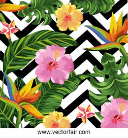 tropical flowers and leaves with figures background