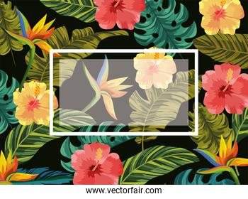emblem with tropical flowers and leaves background