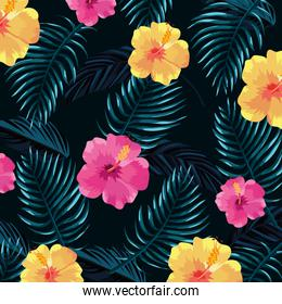 tropical flowers with leaves plants in dark background