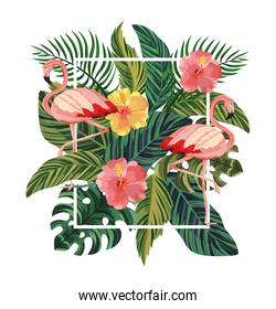 frame with flamingos and tropical flowers with leaves