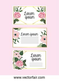 set cards with flowers and roses with branches leaves