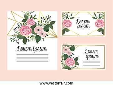 set cards with roses and flowers plants with branches leaves